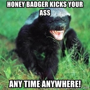 Honey Badger Actual - HONEY BADGER KICKS YOUR ASS ANY TIME ANYWHERE!