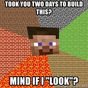 """Minecraft Guy - Took you two days to build this? mind if i """"look""""?"""