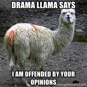 Drama Llama - Drama llama says i am offended by your opinions