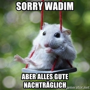 Sorry I'm not Sorry - Sorry Wadim Aber alles gute nachträglich