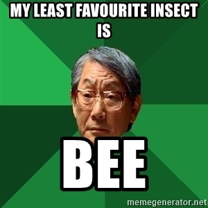 High Expectations Asian Father - My Least favourite Insect is BEE