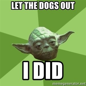 Advice Yoda Gives - Let the dogs out I did
