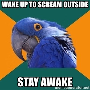 Paranoid Parrot - wake up to scream outside stay awake