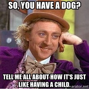 Willy Wonka - SO, you have a dog? Tell me all about how it's just like having a child.
