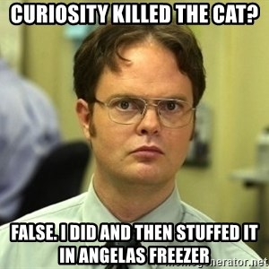 Dwight Schrute - Curiosity Killed the cat? False. I did and then stuffed it in angelas freezer