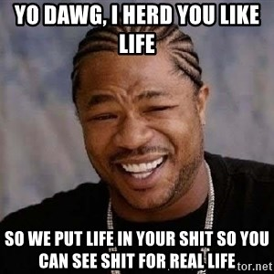 Yo Dawg - Yo dawg, I herd you like Life So we put life in your shit so you can See shit for real life