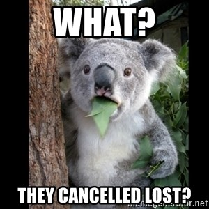 Koala can't believe it - what? they cancelled lost?