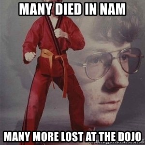 PTSD Karate Kyle - many died in nam many more lost at the dojo