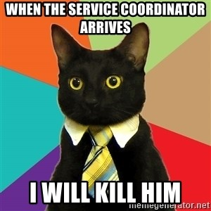 Business Cat - When the Service Coordinator arrives I will kill him