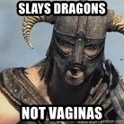 Skyrim Meme Generator - slays dragons not vaginas