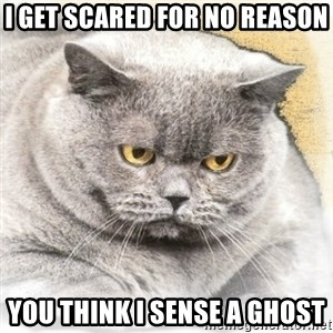 Fat Cat - I GET SCARED FOR NO REASON YOU THINK I SENSE A GHOST