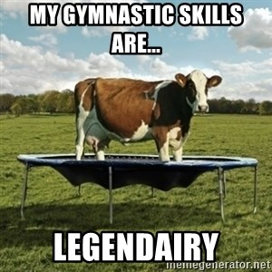 Unimpressionable Cow - my gymnastic skills are... legendairy