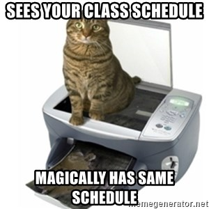 COPYCAT - sees your class schedule magically has same schedule