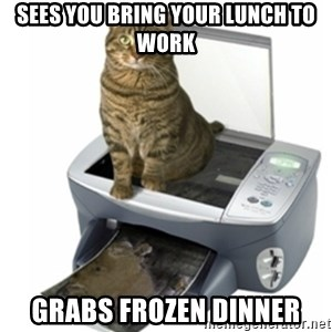 COPYCAT - sees you bring your lunch to work grabs frozen dinner