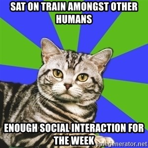 Introvert Cat - Sat on train amongst other humans enough social interaction for the week