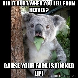 Koala can't believe it - did it hurt when you fell from heaven? Cause your face is fucked up!