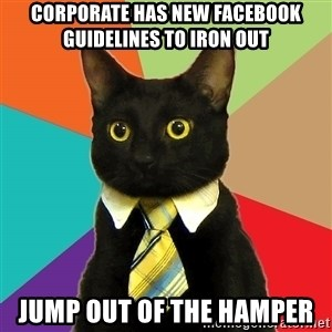 BusinessCat - corporate has new facebook guidelines to iron out jump out of the hamper