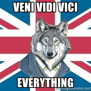 Sir Courage Wolf Esquire - veni vidi vici everything