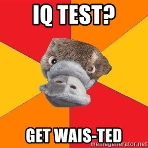 Psychology Student Platypus - Iq test? get wais-ted