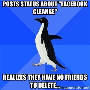 "Socially Awkward Penguin - posts status about ""facebook cleanse"" realizes they have no friends to delete..."