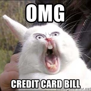 Rabbit On Alert - OMG Credit card bill