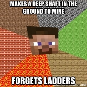 Minecraft Guy - makes a deep shaft in the ground to mine forgets ladders