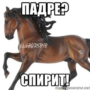 Typical horse model collector - падре? спирит!