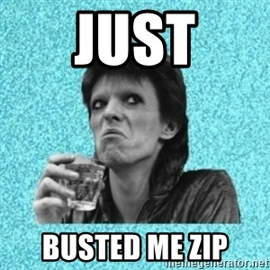 Disturbed Bowie - JUST BUSTED ME ZIP