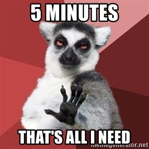 Chill Out Lemur - 5 Minutes that's all I need