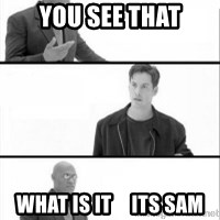 Terras Matrix - you see that what is it     its sam