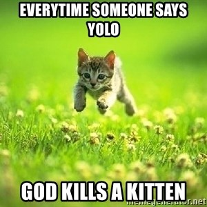 God Kills A Kitten - Everytime someone says yolo God kills a kitten
