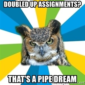 Old Navy Owl - doubled up assignments? that's a pipe dream