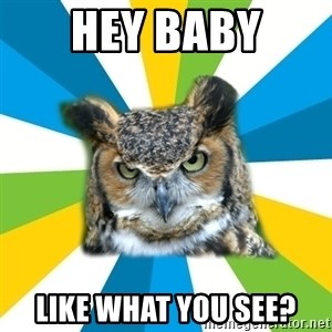 Old Navy Owl - hey baby like what you see?