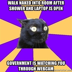 Anxiety Cat - walk naked into room after shower and laptop is open government is watching you through webcam