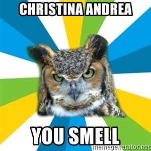 Old Navy Owl - Christina andrea you smell