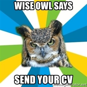 Old Navy Owl - wise owl says Send your cv