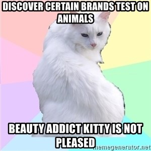 Beauty Addict Kitty - Discover certain brands test on animals Beauty Addict Kitty is not pleased