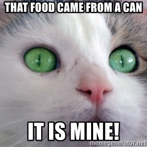 Psychotic Housecat - that food came from a can it is mine!