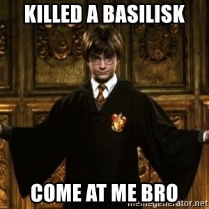 Harry Potter Come At Me Bro - Killed a basilisk come at me bro