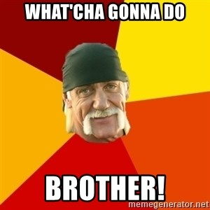 Hulk Hogan - what'cha gonna do brother!