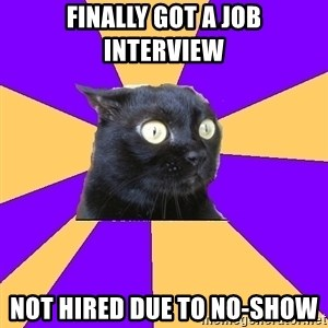 Anxiety Cat - finally got a job interview not hired due to no-show