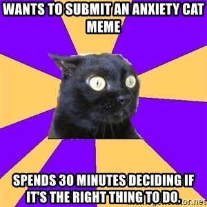 Anxiety Cat - WANTS TO SUBMIT AN ANXIETY CAT MEME SPENDS 30 MINUTES DECIDING IF IT'S THE RIGHT THING TO DO.