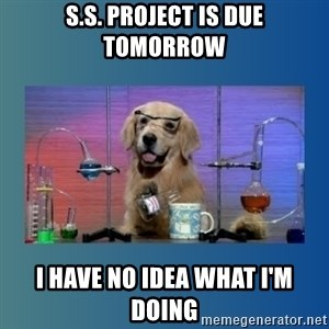 Chemistry Dog - S.S. project is due tomorrow i have no idea what i'm doing