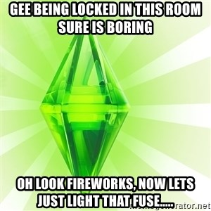 Sims - GEE BEING LOCKED IN THIS ROOM SURE IS BORING OH LOOK FIREWORKS, NOW LETS JUST LIGHT THAT FUSE.....