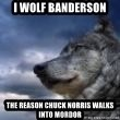 wolf banderson - i wolf banderson the reason chuck norris walks into mordor