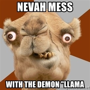 "Crazy Camel lol - nevah mess with the demon ""Llama"