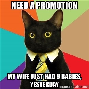 BusinessCat - nEED A pROMOTION MY WIFE JUST HAD 9 BABIES, YESTERDAY