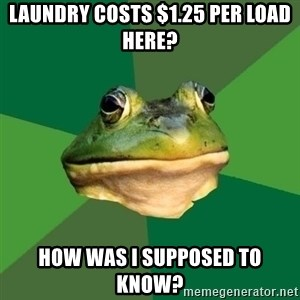 Foul Bachelor Frog - laundry costs $1.25 per load here? how was I supposed to know?