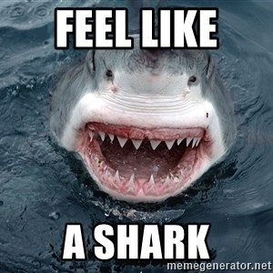 Insanity Shark - Feel like  a shark