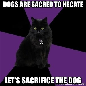Wiccan Cat - dogs are sacred to hecate let's sacrifice the dog